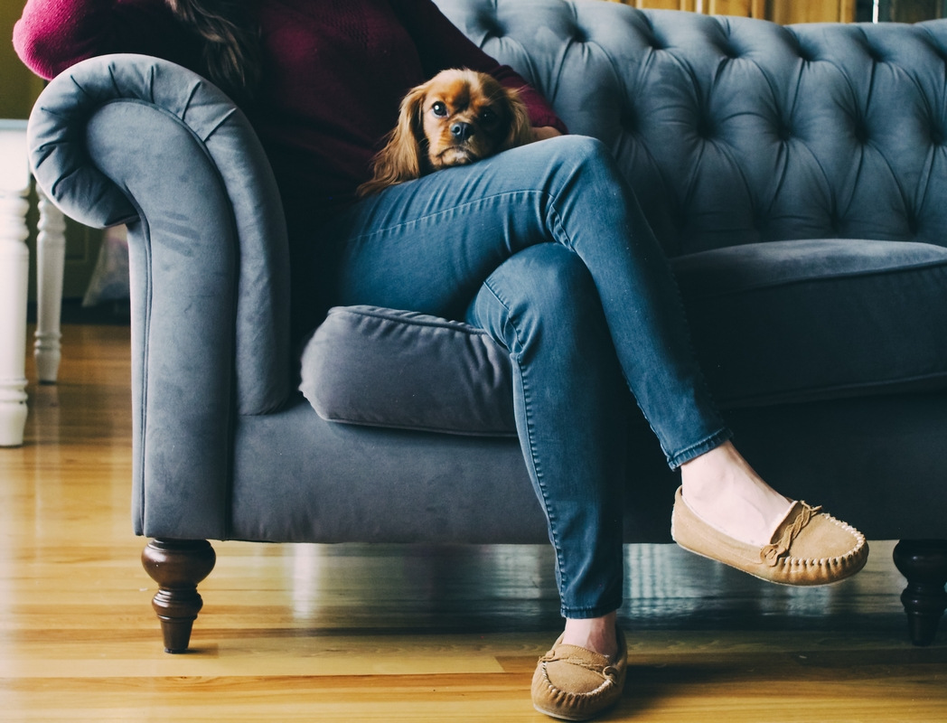Woman sitting on sofa with a dog