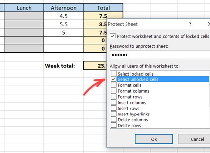 Protecting excel timesheets from editing