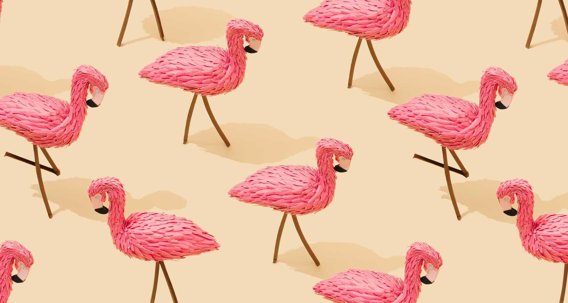 A hero background image of flamingos